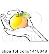 Clipart Of Lineart Hands Holding A Colored Orange Royalty Free Vector Illustration by Lal Perera