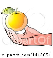 Clipart Of A Caucasian Hand Holding An Orange Royalty Free Vector Illustration by Lal Perera