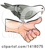 Clipart Of A Pigeon Eating From A Hand Royalty Free Vector Illustration