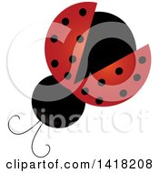 Clipart Of A View Above Of A Ladybug Royalty Free Vector Illustration by Pams Clipart