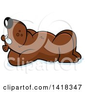 Cartoon Clipart Of A Relaxed Bear Resting On His Back And Stargazing Royalty Free Vector Illustration