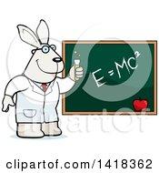 Professor Or Scientist Rabbit By A Chalkboard