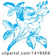 Clipart Of A Sketched Blue Rose Royalty Free Vector Illustration by BestVector