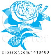 Sketched Blue Rose