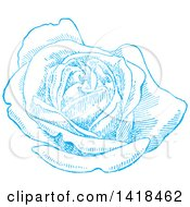 Clipart Of A Sketched Blue Rose In Full Bloom Royalty Free Vector Illustration by BestVector