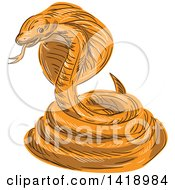 Clipart Of A Sketched Orange Coiled Cobra Viper Snake Royalty Free Vector Illustration by patrimonio