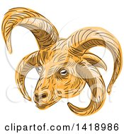 Clipart Of A Sketched Manx Loaghtan Loaghtyn Or Loghtan Sheep Head Royalty Free Vector Illustration