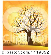 Clipart Of A Tree With Autumn Foliage Against An Orange Sunset Royalty Free Vector Illustration