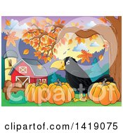 Clipart Of A Black Crow Bird With Pumpkins In An Autumn Barn Yard Royalty Free Vector Illustration by visekart
