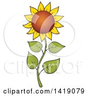 Clipart Of A Sunflower On A Curvy Stalk Royalty Free Vector Illustration by visekart