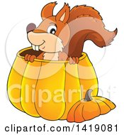 Clipart Of A Happy Squirrel In A Pumpkin Royalty Free Vector Illustration by visekart