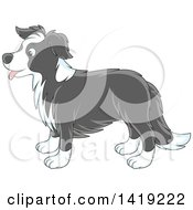 Cartoon Panting Cute Gray And White Border Collie Dog In Profile