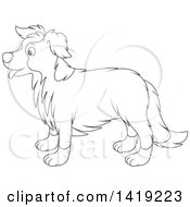 Clipart Of A Black And White Lineart Border Collie Dog In Profile Royalty Free Vector Illustration by Alex Bannykh