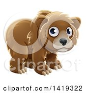 Clipart Of A Cartoon Adorable Grizzly Bear Cub Royalty Free Vector Illustration by AtStockIllustration
