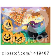 Clipart Of A Crow Wearing A Witch Hat By Halloween Jackolantern Pumpkins Under An Autumn Tree Royalty Free Vector Illustration by visekart