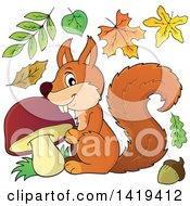 Clipart Of A Happy Squirrel With A Mushroom With Autumn Leaves Royalty Free Vector Illustration by visekart