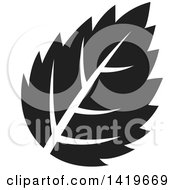 Clipart Of A Black And White Plant Leaf Royalty Free Vector Illustration by cidepix