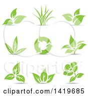 Clipart Of Plant Leaves A Flower And Recycle Arrows In Green With Shadows Royalty Free Vector Illustration by cidepix