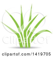 Clipart Of Green Leaves Royalty Free Vector Illustration
