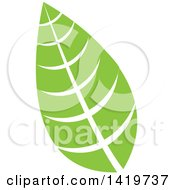 Clipart Of A Green Leaf Royalty Free Vector Illustration by cidepix