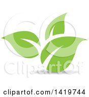 Clipart Of Green Leaves Royalty Free Vector Illustration by cidepix