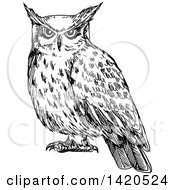 Clipart Of A Sketched Black And White Owl Royalty Free Vector Illustration by Seamartini Graphics