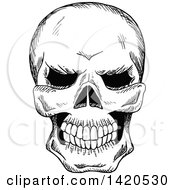 Clipart Of A Sketched Black And White Human Skull Royalty Free Vector Illustration