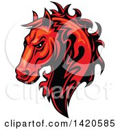 Tough Red Horse Head
