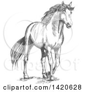 Clipart Of A Sketched Gray Horse Royalty Free Vector Illustration