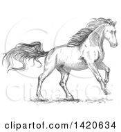 Clipart Of A Sketched Gray Horse Running Royalty Free Vector Illustration