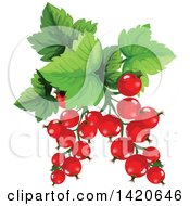 Clipart Of Red Currants And Leaves Royalty Free Vector Illustration