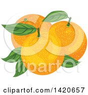 Clipart Of Navel Oranges And Leaves Royalty Free Vector Illustration by Vector Tradition SM