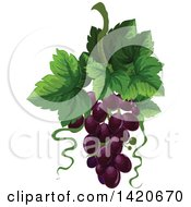 Clipart Of A Bunch Of Purple Grapes And Leaves Royalty Free Vector Illustration by Vector Tradition SM