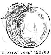 Clipart Of A Black And White Sketched Apricot Peach Or Nectarine Royalty Free Vector Illustration