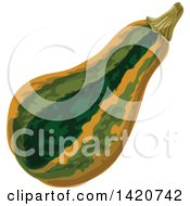Clipart Of A Squash Royalty Free Vector Illustration