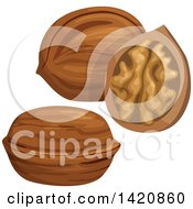 Clipart Of Walnuts Royalty Free Vector Illustration by Seamartini Graphics