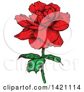 Clipart Of A Sketched Red Rose Flower Royalty Free Vector Illustration by Vector Tradition SM