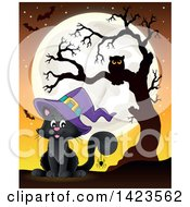 Halloween Witch Cat Against A Full Moon With A Spider Bats And Owl In A Tree