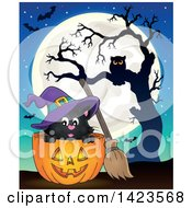Halloween Witch Cat In A Pumpkin Against A Full Moon Bats And Owl In A Tree