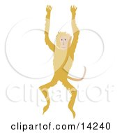 Happy Monkey Jumping Up And Down Wildlife Clipart Illustration #14240 by Rasmussen Images