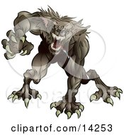 Aggressive Drooling And Growling Werewolf Monster Rushing Forward To Attack Clipart Illustration