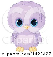 Poster, Art Print Of Cute Purple Baby Owl With Big Blue Eyes