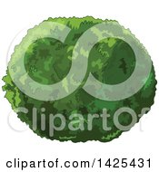 Clipart Of A Lush Green Shrub Royalty Free Vector Illustration