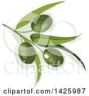 Clipart Of A Branch With Green Olives Royalty Free Vector Illustration by Vector Tradition SM