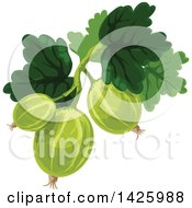 Clipart Of A Bunch Of Gooseberries Royalty Free Vector Illustration