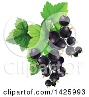 Clipart Of A Bunch Of Black Currants Royalty Free Vector Illustration by Vector Tradition SM