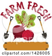 Clipart Of A Beet With Shovels With Farm Fresh Text Over A Banner Royalty Free Vector Illustration