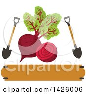 Clipart Of A Beet With Shovels Over A Banner Royalty Free Vector Illustration