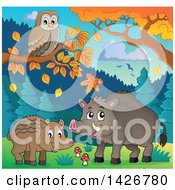 Razorback Boar Piglet And Mother Under Autumn Trees With An Owl