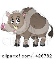 Razorback Boar